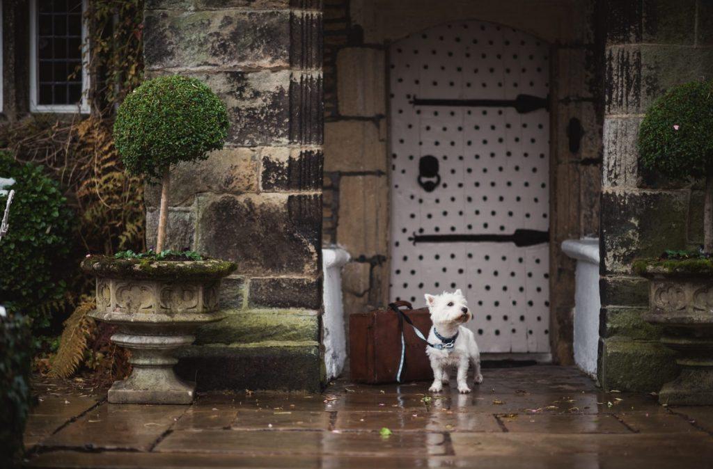 dog friendly hotel Yorkshire